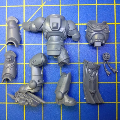 Wh40k SM Primaris Captain Body