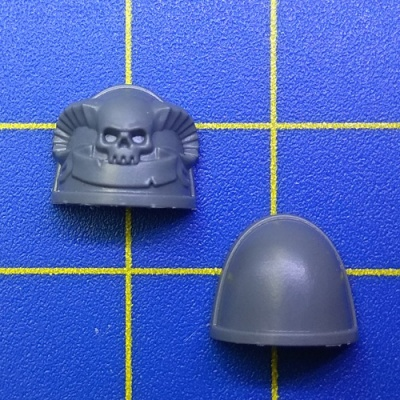 Wh40k SM Primaris Librarian Shoulder Pads